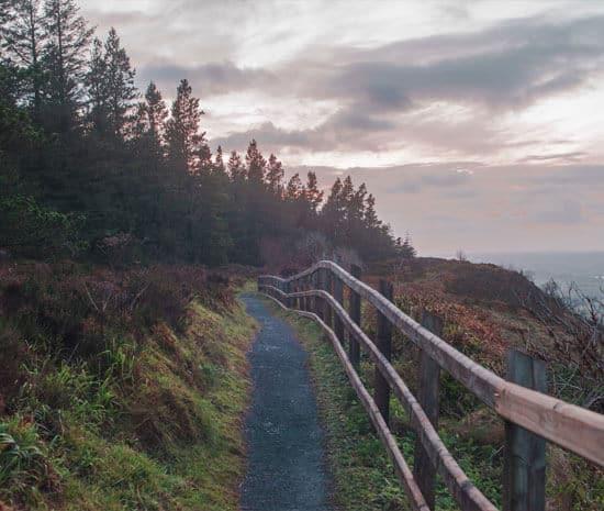 Navar forest walk, County Fermanagh, Northern Ireland