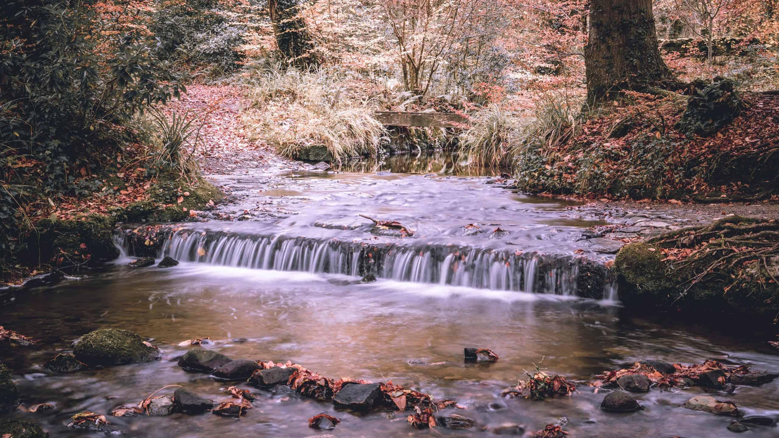 Autumn in Enniskillen